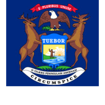 Michigan SBA District